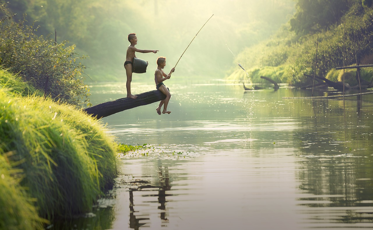 summer fishing photo